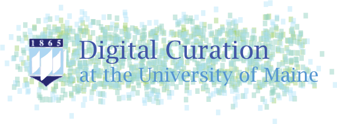 Digital Curation logo